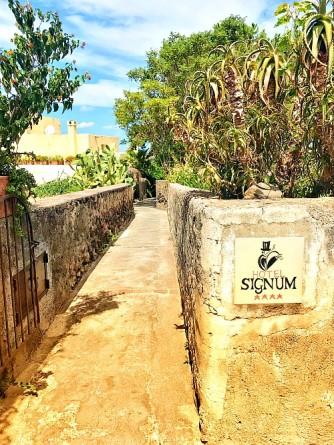 signum 4