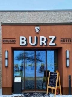 buzz 7 ok